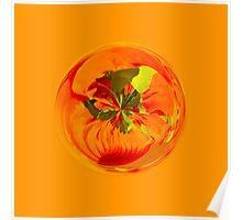 Orange in the globe Poster
