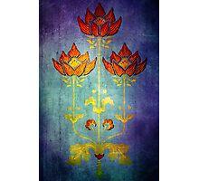 THREE FLOWERS Photographic Print