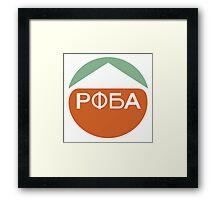 Destiny POBA Framed Print