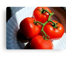 Red Tomatoe Cluster Canvas Print