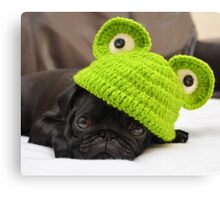 Pug in frog hat Canvas Print