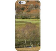 LAKES COUNTRYSIDE iPhone Case/Skin