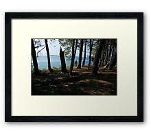 Grand Island Woods Framed Print