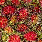 Rambutan Fruit by Elaine Teague