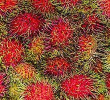 Rambutan Fruit by Elaine Teague