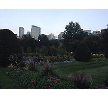 Gorgeous Boston Public Gardens Photographic Print