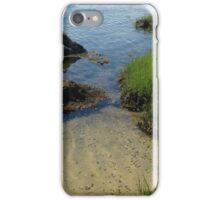 edge of lake tashmoo iPhone Case/Skin