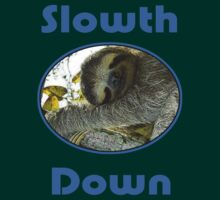 Cute Sloth T-Shirt - Slow Down & Take It Easy - Tee by deanworld