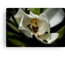 Seven bees-a-foraging Canvas Print