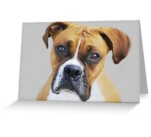 """""""I understand..."""" Greeting Card"""
