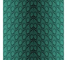 Tiffany Aqua and Black Python Snake Skin Reptile Scales Photographic Print