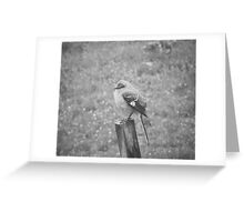 The Bird Black and White Greeting Card