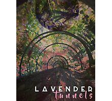 Lavender Tunnels Photographic Print