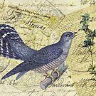 Blue Bird of Happiness by Sarah Vernon