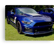 Mustang sunburst Canvas Print