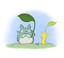 Totoro Pikmin Crossover Photographic Print