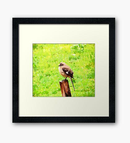 The Bird Painting  Framed Print