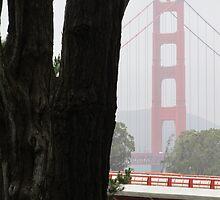 Golden Gate Bridge by ahlasny