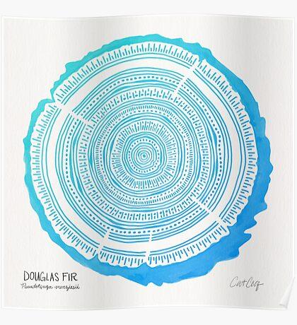 Douglas Fir – Blue Ombré Poster