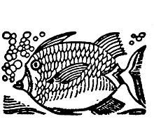 Woodcut Fish  Photographic Print