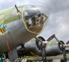 B-17 Bee by Sue Morgan