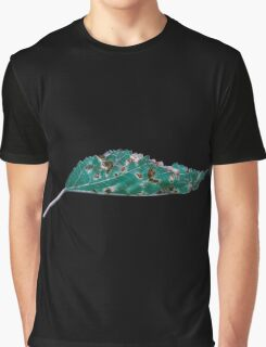 Abstract Green Leaf Graphic T-Shirt