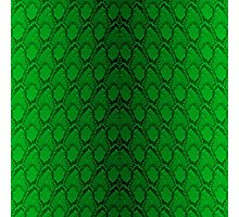 Neon Green and Black Snake Skin Reptile Scales Photographic Print