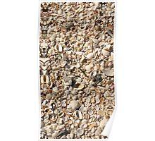 Seashell Sand, Gasparilla Island, Florida Poster
