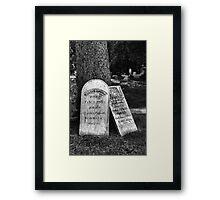 NBW232 Framed Print