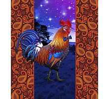 Rooster with a bowtie Photographic Print