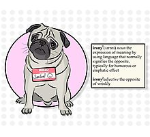 Smiler The Ironic Pug Photographic Print