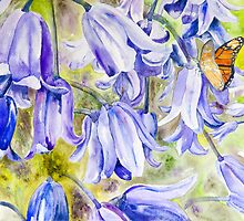 Bluebells & Butterfly by A Portrait  of Europe