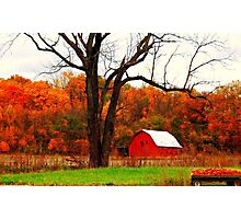 An Indiana Autumn Photographic Print