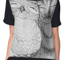 The Owl and the Pussycat Chiffon Top
