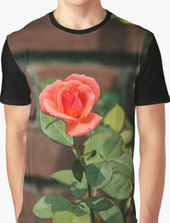 Shropshire Star Orange Rose Against The Red Brick Wall - Pinelawn Memorial Park And Garden Mausoleums   Farmingdale, New York Graphic T-Shirt