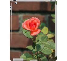 Shropshire Star Orange Rose Against The Red Brick Wall - Pinelawn Memorial Park And Garden Mausoleums | Farmingdale, New York iPad Case/Skin