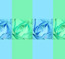 Roses and Blue and Green by Deborah McGrath
