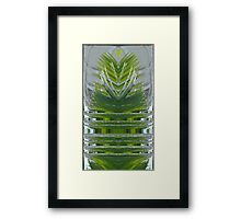 Conifer Fountain Framed Print