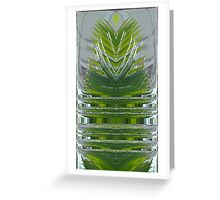 Conifer Fountain Greeting Card