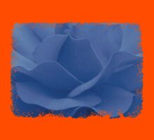 A blue rose © Kids Clothes