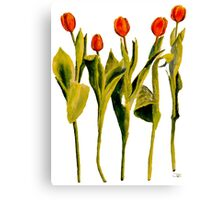 Five Tulips Canvas Print