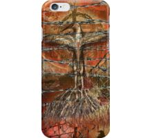 The hurting hidden moon iPhone Case/Skin