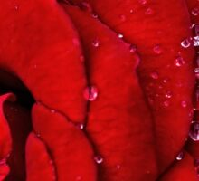 Rainy morning drama Sticker