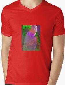 Exuberance Mens V-Neck T-Shirt