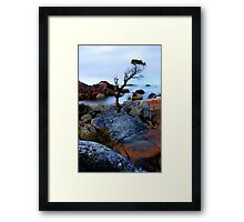 Survival Artist Framed Print
