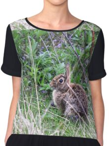 Eastern Cottontail in the Brush Chiffon Top