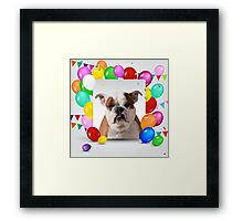 Bulldog Dog with colorful Balloons Birthday Theme Framed Print