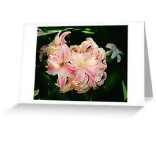 Wild Hyacinth Greeting Card