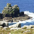 Weathered rocks at Land's End by nealbarnett