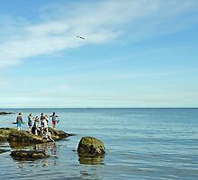 Rock Pool Fishing, Runswick Bay by Rod Johnson